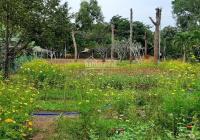 Lô đất đẹp MT đường nhựa 45m giá 3.850 tỷ ngay khu dân cư Tam Phước, Long Điền