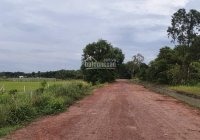 Đất cần bán gấp thuộc Xã Nhuận Đức, huyện Củ Chi, DT: 14.5 x 31m, giá bán: 1 tỷ