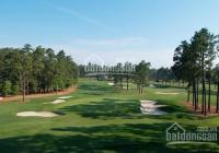 Đất nền sân golf long thành, sát sông, bến du thuyền 19tr/m2 - sổ đỏ trao tay (liền kề Aquacity)