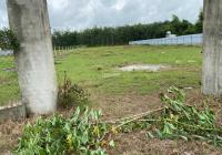 Đất vườn Củ Chi, MT đường Ba Sa, giá rẻ 500m2 1tỷ179 SHR công chứng sang tên ngay