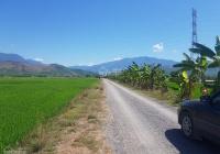 Vì dịch bệnh nên cần bán 7 sào đất ruộng xã Ninh Sơn, Thị xã Ninh Hòa mặt tiền đường ô tô tận nơi