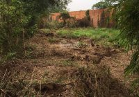 Bán đất Nguyễn Thị Nê, 229m2, 1 tỷ 950, Phú hòa Đông, Củ Chi. LH 0901199686