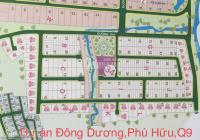 Chuyên đất nền dự án Đông Dương, đường Bưng Ông Thoàn Q9, nhiều nền giá cần bán giá tốt