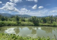 Bán 5,2 sào (100m2 thổ cư) ở thôn 8 Đại Lào Đất lên được 80% thổ cư. Cách đường lớn chỉ 300m
