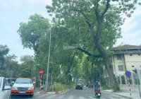Nhà mặt phố Hồng Tiến diện tích 45m2, giá hơn 13 tỷ