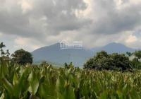 Chính chủ cần bán gấp lô đất 800m2 tại Gò Đình Muôn, Khánh Thượng, Ba Vì, Hà Nội. LH 0975349726