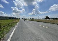 Bán gấp trong tháng 7/2021 lô đất ĐT852B, Xã Bình Thạnh Trung, huyện Lấp Vò, tỉnh Đồng Tháp