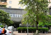 Cho thuê mặt bằng tầng 1 thương mại tòa Vimeco Nguyễn Chánh, Cầu Giấy, 240m2 căn góc, 2 mặt thoáng