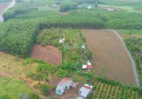 Cần bán 2000m2 đất gần Hương Lộ 10, xã Sông Nhạn, huyện Cẩm Mỹ