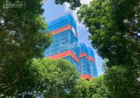 Sàn thương mại giá rẻ hơn chung cư, giá chỉ 20 triệu/m2