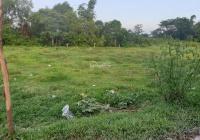 Chính chủ cần bán đất tại Long An gần đường lớn