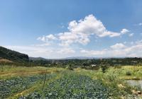 Bán lô 4000m2 gần ủy ban xã lên thổ cư view suối, mặt đường bê tông, giá rẻ nhất khu. LH 0989758796