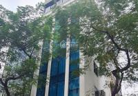Nguyên Hồng Building 9 tầng thang máy ô tô tránh vỉa hè kinh doanh đỉnh - thông Huỳnh Thúc Kháng
