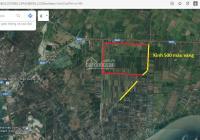 Tôi cần chuyển nhượng 1500ha đất nông nghiệp Kiên Giang