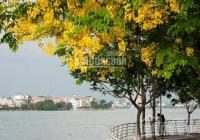 Bán nhà Trích Sài Tây Hồ, ô tô, gần hồ, ở sướng miễn bàn, KD căn hộ đỉnh, 99m2X4T - nhỉnh 11 tỷ