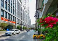 Bán shophouse Pegasuite đường Tạ Quang Bửu 160m2 ngay sảnh chính dự án, bán gấp, thương lượng mạnh