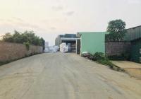 Bán 6000m2 đất sẵn nhà xưởng khang trang chỉ việc sản xuất tại Tiến Xuân, Thạch Thất