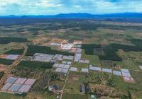 Chính chủ cần bán trang trại 8 hecta đất tại khu nông nghiệp công nghệ cao gần Mũi Né, Bình Thuận