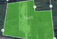 60.000 m2 đất KDC mặt tiền đường Võ Văn Bích, Bình Mỹ, Củ Chi, HCM