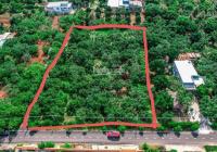 Đất Long Tân, Đất Đỏ giá đầu tư LH: 0933.307.407 (Ms Tuyền) giá chỉ 4tr9/m2 MT lên đến 10m