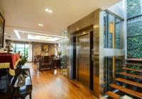 Hiếm có nhà phân lô trung tâm Ba Đình thang máy 7 tầng gara ô tô kinh doanh đỉnh cao 12.x tỷ
