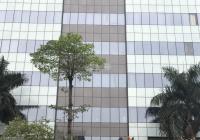 Bán gấp nhà mặt phố Trần Hưng Đạo - lô góc - 9 tầng 405m2 - mặt tiền 21m 290 tỷ dòng tiền 900 tr/th