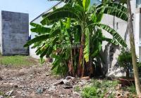 Cần bán đất chính chủ trong KDC Tân Đức - gần Trường Đại học Tân Tạo, DT 125m2, giá bán 1 tỷ