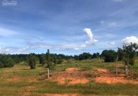 Đất nông nghiệp tại Bình Thuận, liền kề cao tốc Dầu Giây - Phan Thiết, giá chỉ từ 700tr/nền