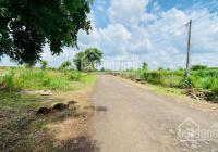 Chính chủ bán 3000m2 đất thổ cư ngay khu dân cư thị xã đường lộ 42 mét 1000m2