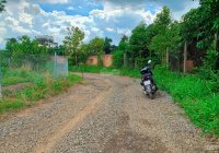 Cần bán đất vườn 1000m2 cách mặt tiền đường nhựa 700m tại Phú Ngọc, Định Quán