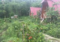 Bán lô đất trang trại 2hec xã Hoà Ninh, cách phố 10km thích hợp làm vườn nghỉ dưỡng, tránh dịch