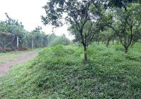 Cần thanh khoản lô đất nghỉ dưỡng tại Cao Phong, Hoà Bình