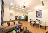 Cần bán căn hộ chung cư B6 Giảng Võ - The Golden Armor, 115m2, 3PN, căn thương mại, giá 6.4 tỷ