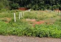 Chính chủ cần bán gấp lô đất mặt tiền xã bàu chinh, giá 2 tỷ diện tích đất ngang; 10x72 (720m2)