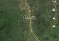 Chính chủ: Bán 800m2 đất mặt đường du lịch Bái Đính - Tam Chúc, 1,32 tỷ