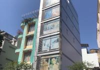 Cần bán tòa nhà hiện đang kinh doanh Căn hộ dịch vụ đường  Thạch Thị Thanh, Phường Tân Định, Quận 1