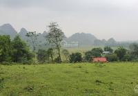 Bán 4641m2 view cánh đồng, núi đá trập trùng tuyệt đẹp giá hơn 700 triệu tại Lương Sơn