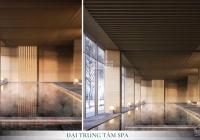 Studio VIP khoáng nóng Onsen Ecopark - hàng ngoại giao tầng cực đẹp - view Hồ Thiên Nga- 0905270888