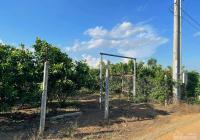 Chính chủ bán lỗ lô đất MT đường lớn 8m tại Bàu Chinh, DT: 14x45m, giá chỉ: 1.6 tỷ 0908772972