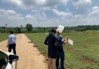 Chính chủ cần bán gấp đất 110m2 tại Sông Xoài giá chỉ 600tr