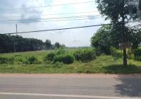 Cần tiền nuôi bò tôi bán 3,6 sào đất, nằm ngay TT thị xã sát cổng KCN, chợ, dân đông giá 580 tr