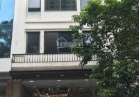 Mặt phố Mạc Thái Tông, gần big C: 110m2, MT 7m, 6 nổi, 1 hầm, văn phòng, kinh doanh vip, 45 tỷ