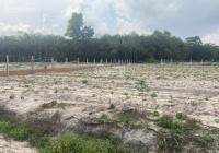 Bán đất vườn ở Biên Hòa, giá 2.8tr/m2, DT 500m2, 600m2, 700m2