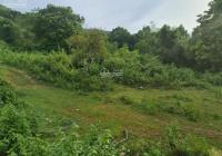 Chính chủ bán mảnh 4131m2 full đất vườn tại Cư Yên, Lương Sơn, Hòa Bình giá đầu tư