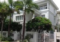 Gia đình cho thuê biệt thự sân vườn Hưng Thái - Phú Mỹ Hưng, Quận 7 nhà mới 100%