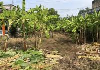 Bán lô đất vườn 200m2 có 120m2 thổ cư Tỉnh Lộ 10 sổ riêng, giá 1 tỷ 600 triệu