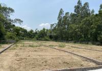 Đất thôn Bàn Long, xã Minh Quang, huyện Tam Đảo