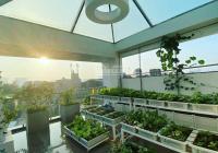 Biệt thự sân vườn Bình Thạnh 103m2 tặng full nội thất cao cấp
