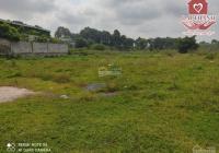 Cho thuê đất mặt tiền đường Thành Thái Phước Tân. LH 0919310345