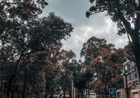 Bán nhà đường Nguyễn Thị Minh Khai, P. Đakao, Quận 1 DT 4.1 x 12.5m, giá 14 tỷ, LH: 0901.888.086